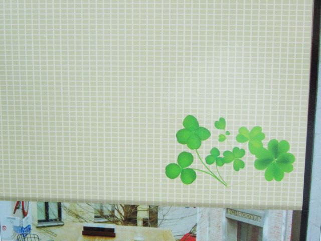 塑胶地板 简易清洁保养方法 地毯清洁的选择  百叶窗的清洗 卷帘diy